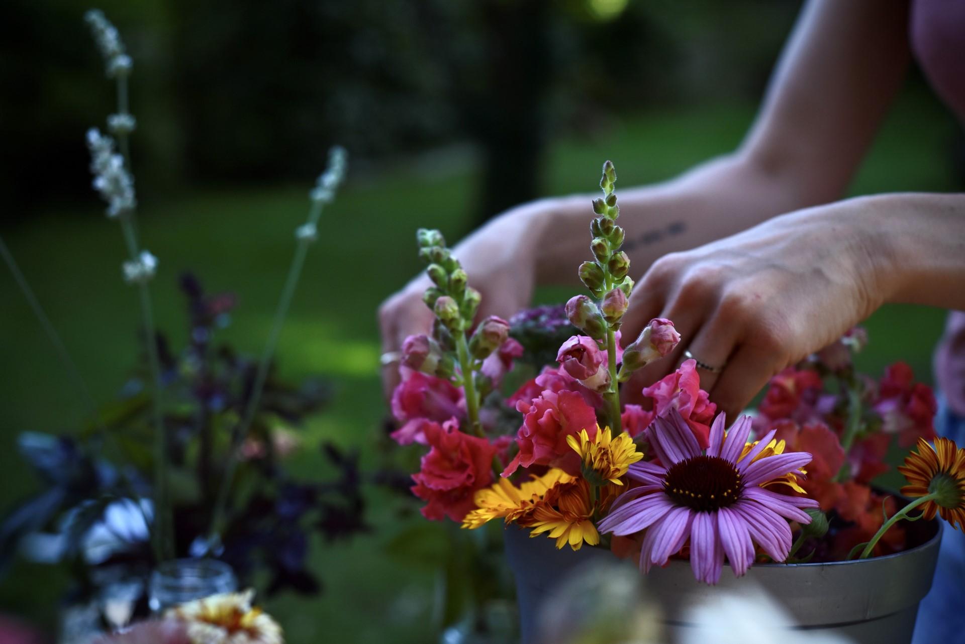 FleuraissanceXSlowflowerbewegung3